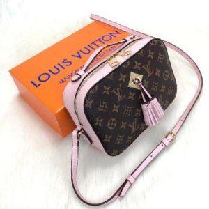 Louis Vuitton Saintonge 22x16x8cm